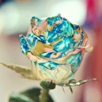 Цветы с 3D рисованием своими руками