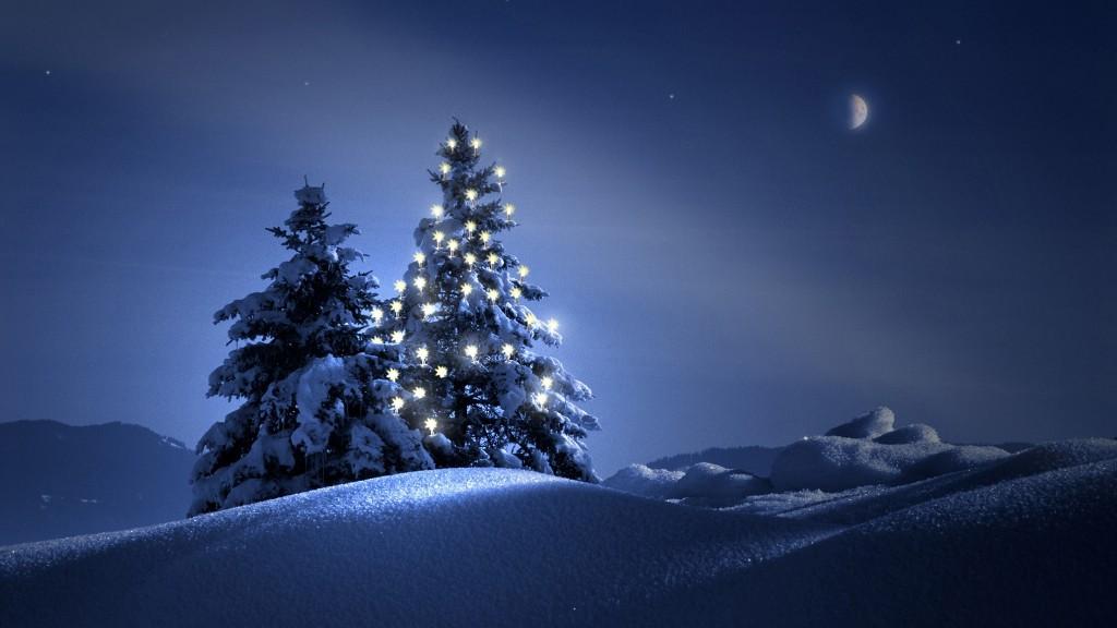 Рождественская елка – безусловный признак торжества Нового года и Рождества.